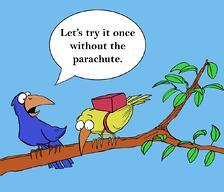 Encourage_-_birds