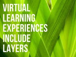 How to Design Virtual Learning