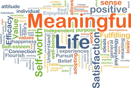 Make Learning Meaningful